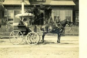 HorseBuggy1808
